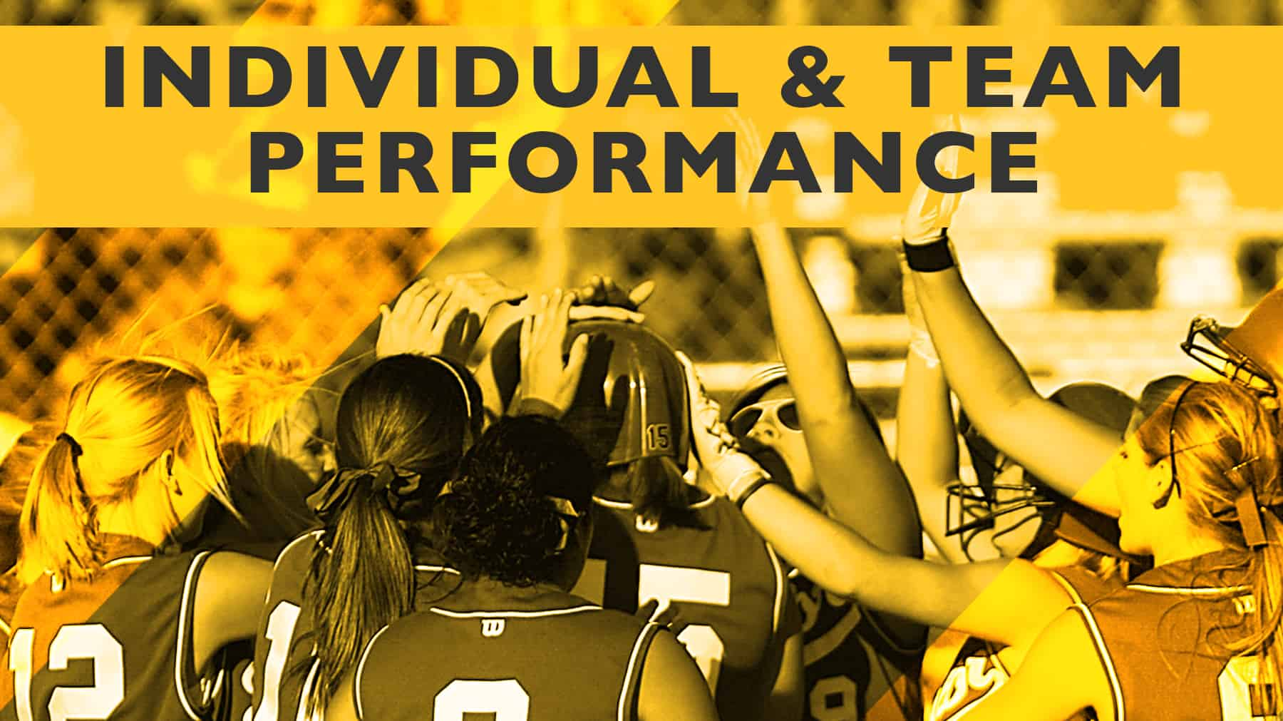 developing individuals and teams Teams drive organizational success, though developing and leading high-performance teams is one of the most complex tasks facing any leader in the current competitive work environment cohesiveness is the key factor in implementing effective, high-performance teams.
